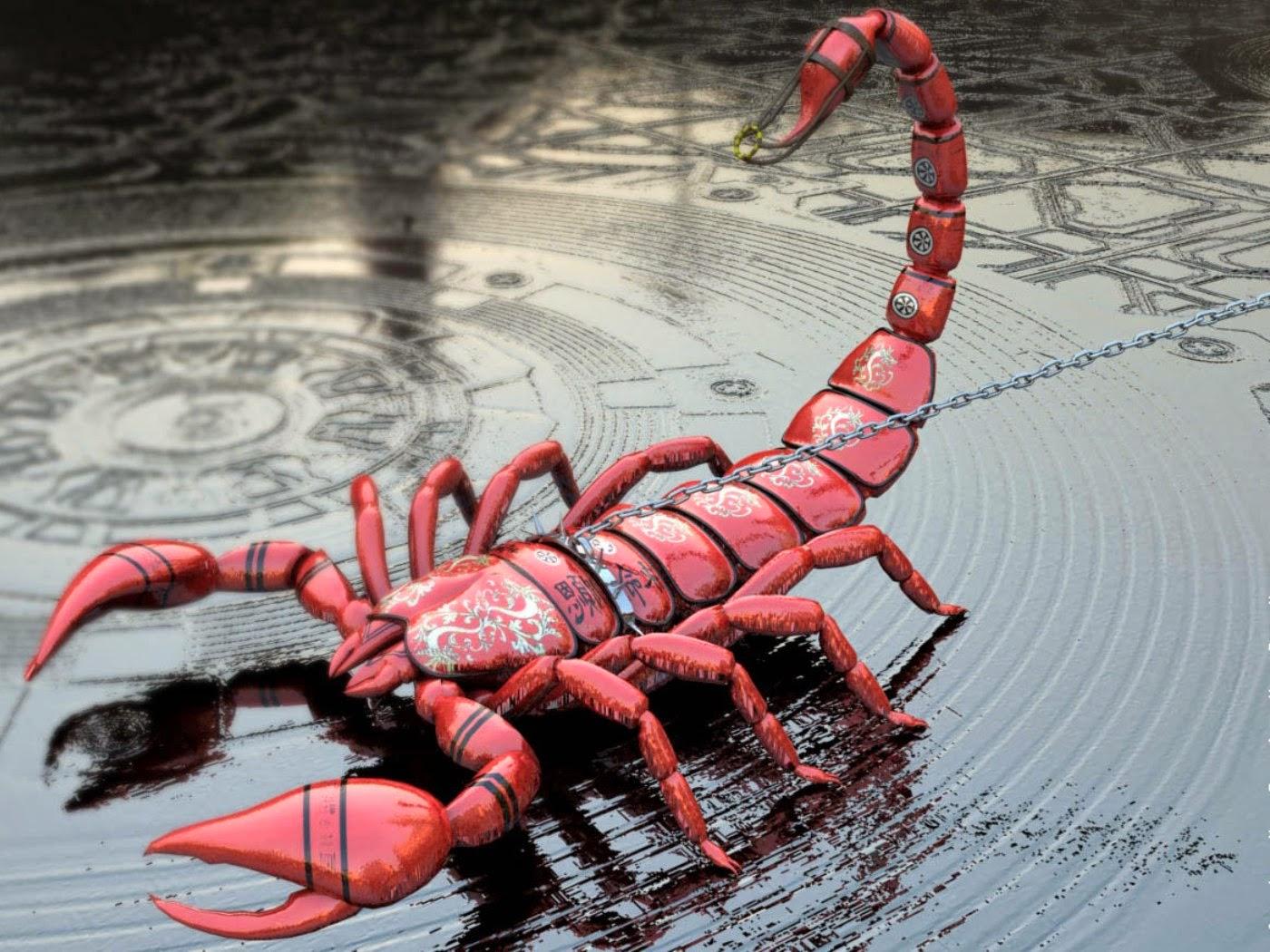 Фото скорпиона в цветах