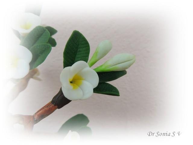 thai clay flowers