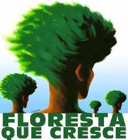 foresta che cresce