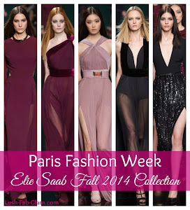 Head Over Heels In Love With Elie Saab Fall 2014 RTW Collection.