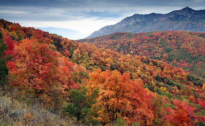 Utah Fall Color Photography Workshop is Sept 27 -29, 2013