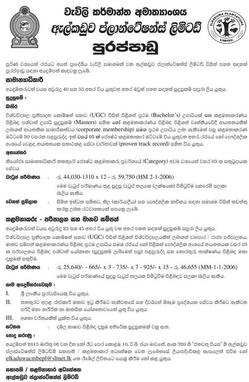 Information Source Dinamina Newspaper 18.02.2015