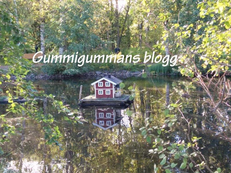 Gummigummans blogg