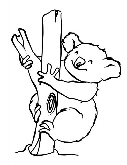 Dibujos Para Colorear De Koalas ▷koalas para colorear Dibujos para ...
