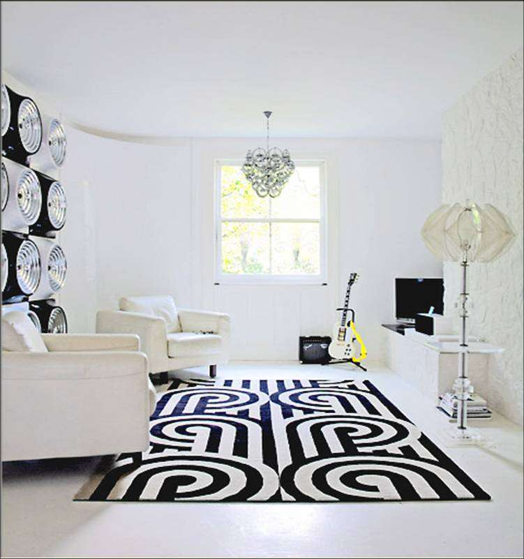 Black and White Living Rooms with Rug