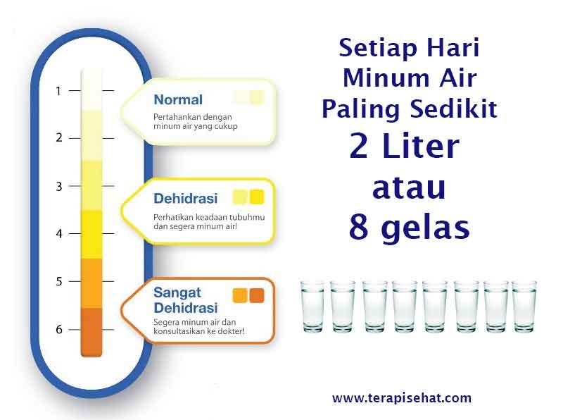 warna urin untuk menentukan kesehatan anda terapi sehat