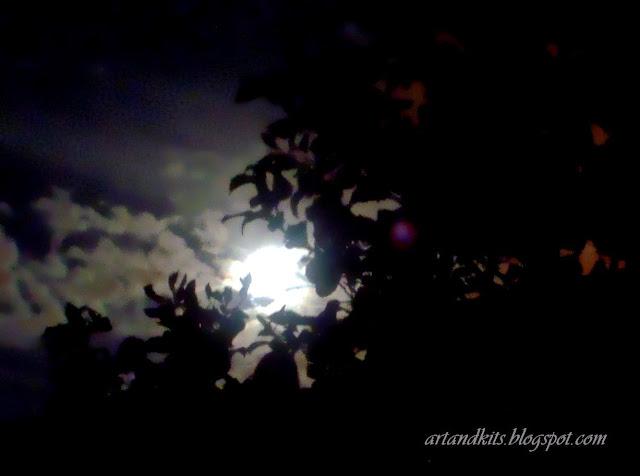 Até a noite gosta de luz... e talvez por isso, tanto aprecia, o lado brilhante da Lua por companhia... ou simplesmente, acende as estrelas, para trazer à noite, aquilo que tanto lhe falta... apenas e só... um pouco mais de dia... / Even the night, likes the light... and perhaps that's why it appreciates so much, the brighter side of the moon, for company... or simply, lights the stars, to bring to the night, what it lacks most... a little daylight...