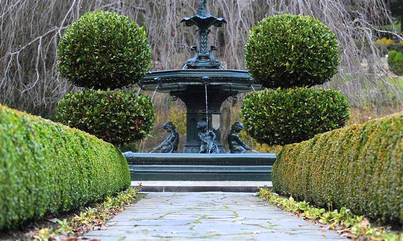 Il mondo in un giardino consigli per la potatura delle siepi - Siepi ornamentali da giardino ...