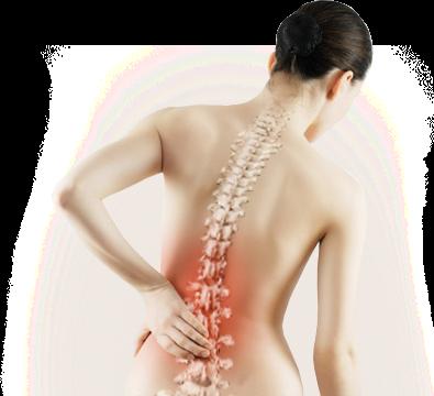 El dolor en la espalda en una en la columna vertebral