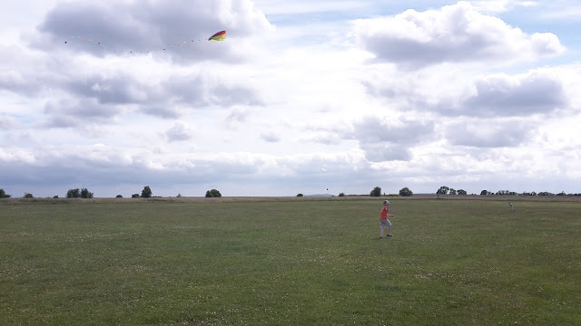 Project 365 2015 day 178 - Kite flying // 76sunflowers