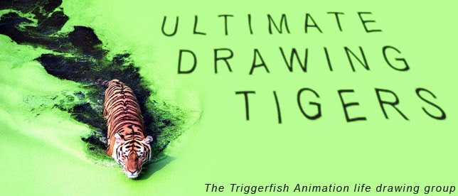 ULTIMATE DRAWING TIGERS