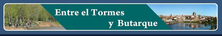 Entre el Tormes y Butarque | Alba de Tormes