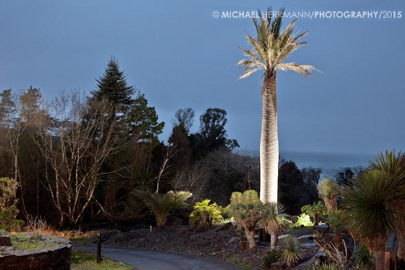Kells Bay Garden