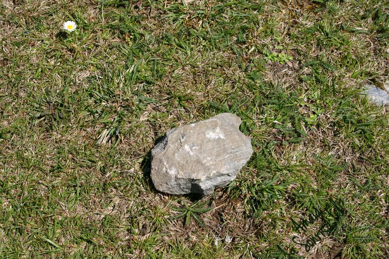 la piedra mediana en el camino