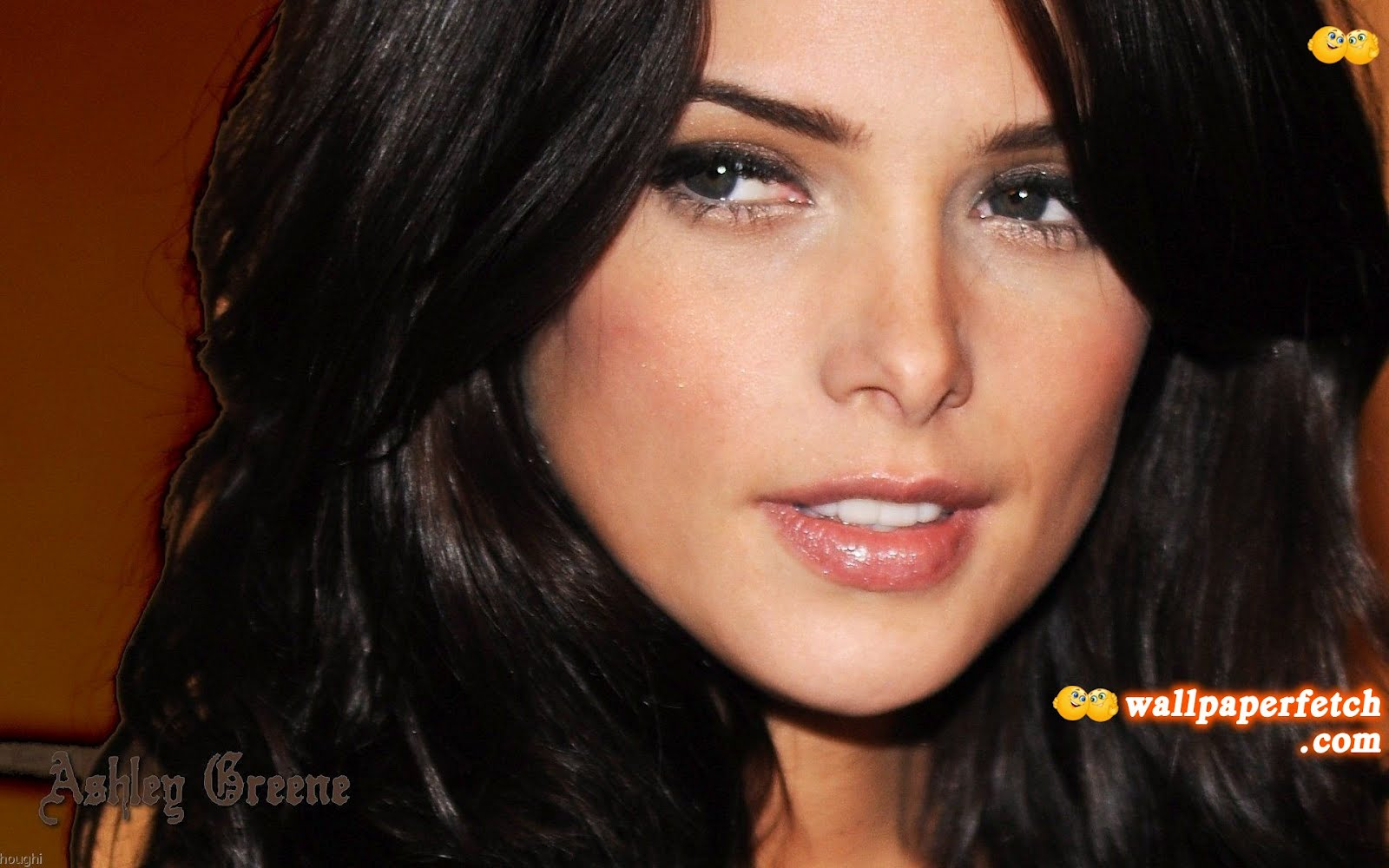 http://2.bp.blogspot.com/-MDj8ADLTCJk/UArWyDMltcI/AAAAAAAAGjY/uaEPbrMZGRY/s1600/ashley-greene-beautiful-girl_1920x1200_90004.jpg