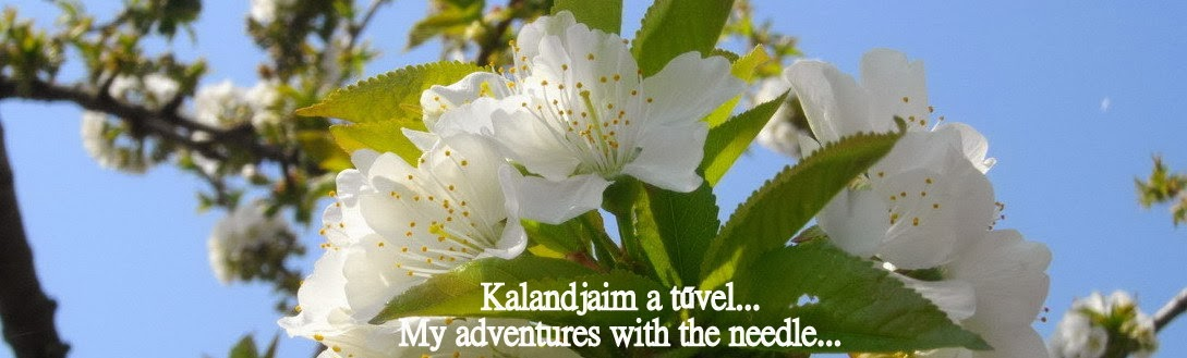 Kalandjaim a tűvel....My adventures with the needle...