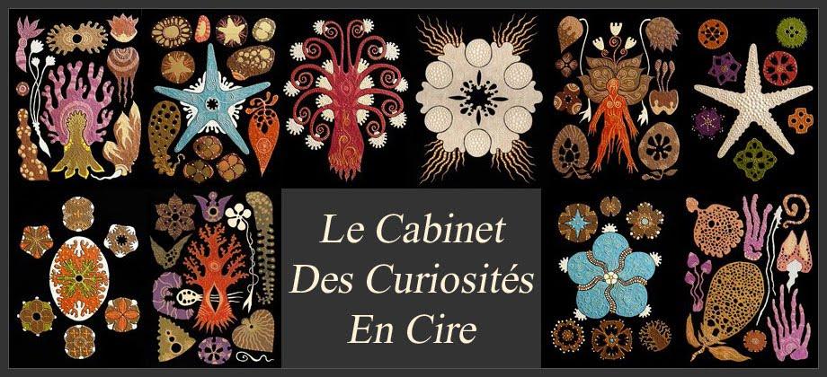 Le Cabinet Des Curiosités En Cire