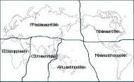 ZOOGEOGRAFI (Geografi Hewan)