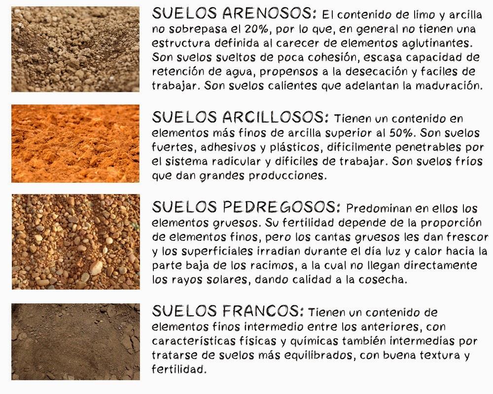 Cu l es el suelo m s adecuado para la vid for Cuales son las caracteristicas del suelo
