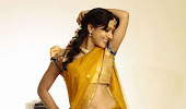 glamorous Divya singh hot navel show in half saree