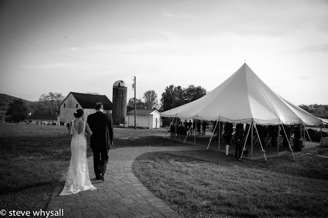 868 estates vineyard wedding ceremony photo