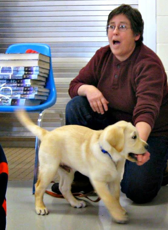 A woman with short brown hair wearing glasses and a marroon shirt and bluejeans is kneeling on the floor with her left fist in the mouth of a small yellow lab puppy. Her right hand is on her right knee. The yellow lab is facing the right and his tail is wagging as he chomps down ont he woman's fist. Next to the woman on the left side of the photo is a blue plastic chair. About 11 books are piled on the seat of the chair. The woman is making a surprised expression, her eyes and mouth are wide open.