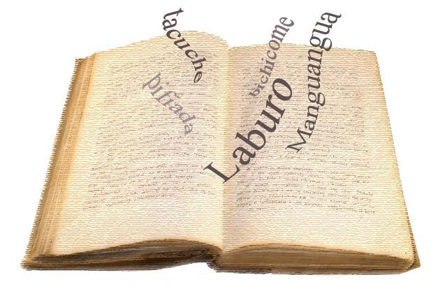 diccionario modismo: