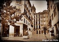 Ave-Quiromántica-en-Málaga