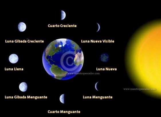 Ceip alcalde galindo la luna durante el mes de febrero for Fases de la luna hoy