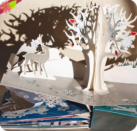 Flocons de neige de Jennifer Preston Chushcoff et Yevgeniya Yeretskaya