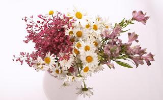 flores silvestres en jarron