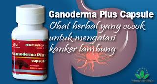 obat herbal kanker lambung