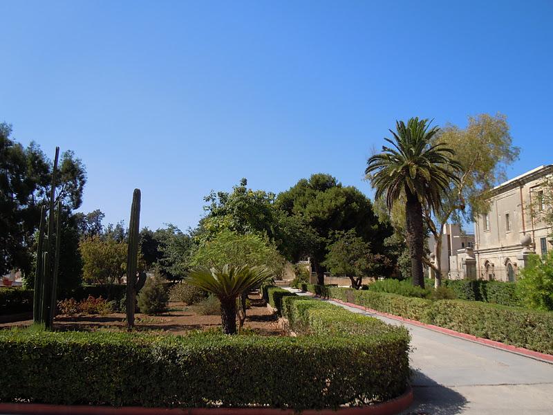 Sve malte le jardin botanique de floriana for Amis jardin botanique