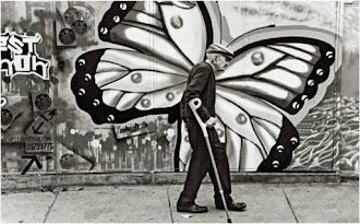 La vieja mariposa