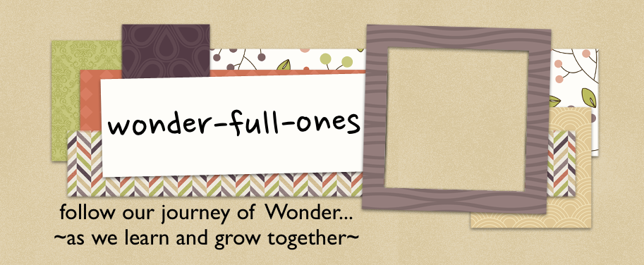 wonder-full-ones