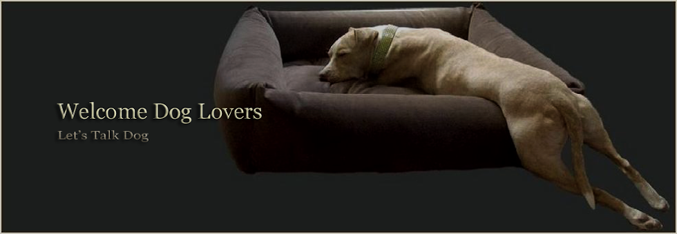 Welcome Dog Lovers - Information About Dogs, Dog Breeds, Dog Training, Adoption & Behavior