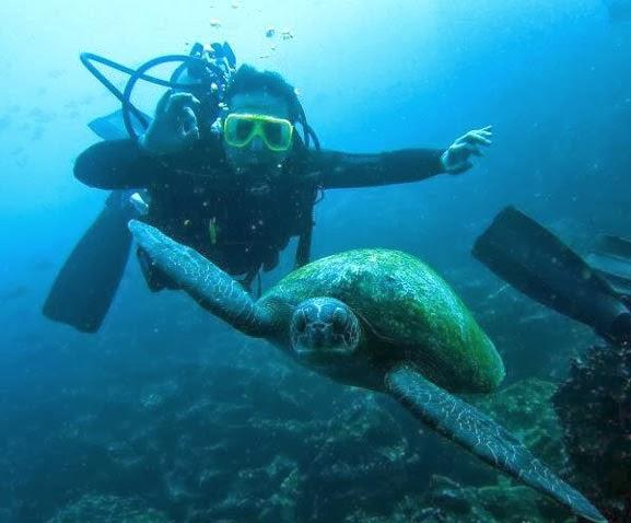 Turismo en Ecuador ¿Cómo explorar las Islas Galápagos?