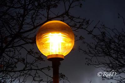 Tänd gatlykta (rund, i glas). Bakgrund: trädsiluett och mörkblå himmel. foto: Reb Dutius
