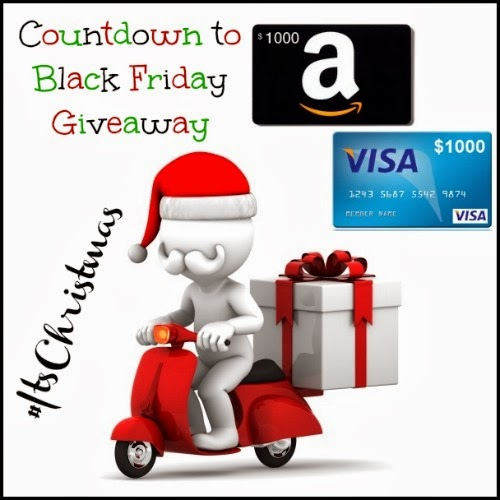Countdown to Black Friday Giveaway – Ends 11/29