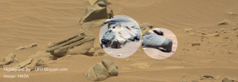 Mars curiosity spotted carved animal statue and strange