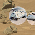 Mars Curiosity Spotted Carved Animal Statue and Strange Artifacts On Mars