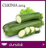 http://durszlak.pl/akcje-kulinarne/cukinia-2014#