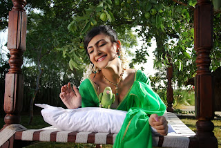 Actress Neelam Upadyaya Latest  Pictures in Green Saree  0012.jpg