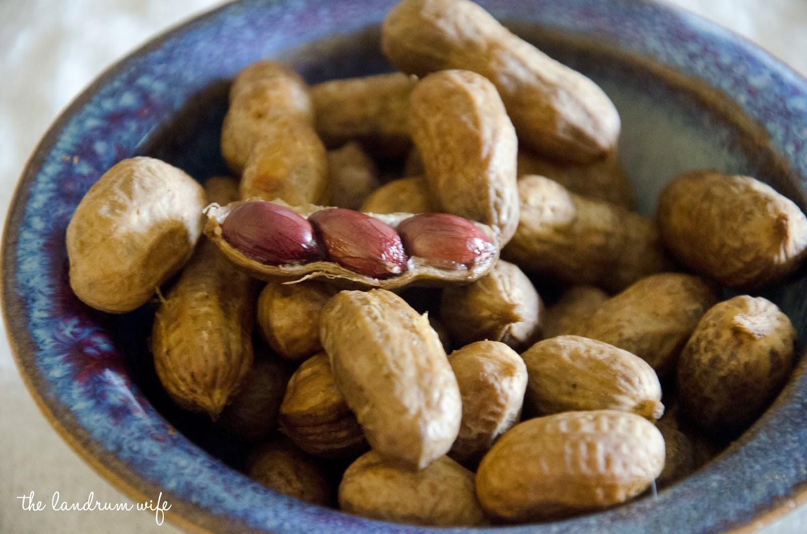 And Drink the Wild Air: Crock Pot Cajun Boiled Peanuts