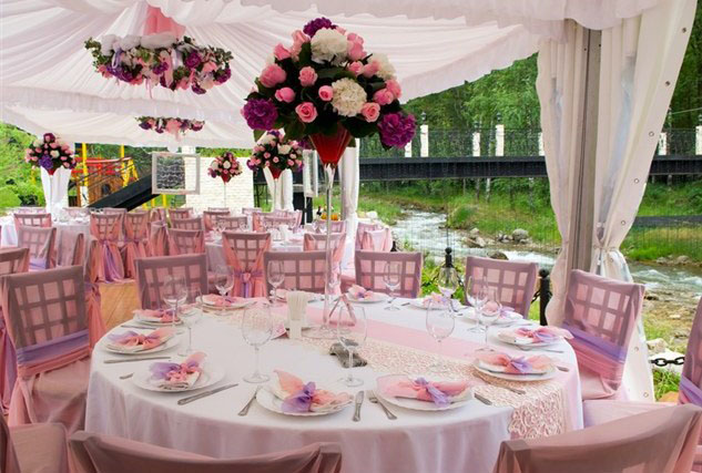 Marriage Cost Saving with Garden Party Concept | Wedding Concept Ideas