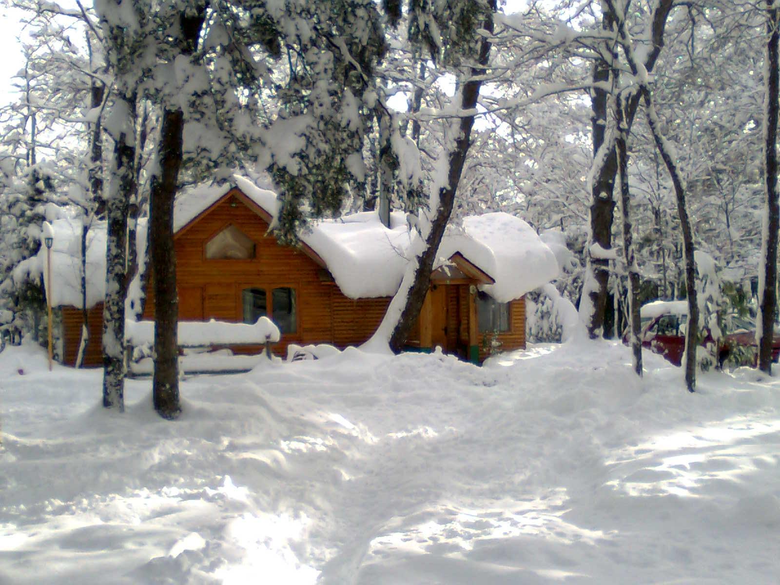 Venta establecimiento de caba as en termas de chillan - Cabanas de madera en la nieve ...
