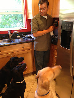 Dave is at the counter filling a kong with peanut butter.  He is watched by Coach, Bo and Duke.