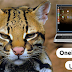 Download Ubuntu 11.10 Oneiric Ocelot - Lokal Indonesia