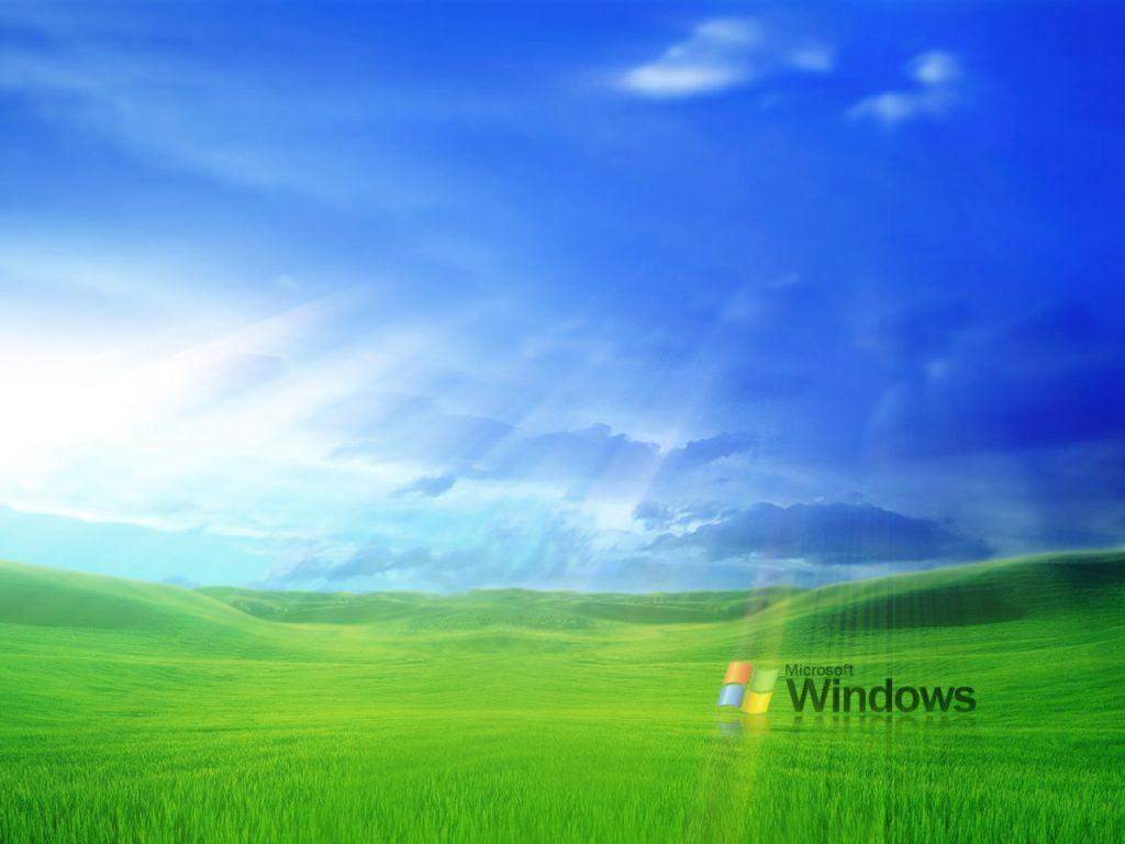 Microsoft Windows Essays (Examples)