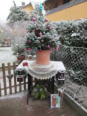 Ein kleiner Gartengruß...